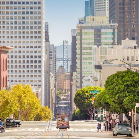 Pituitary Disorders CME Course in San Francisco